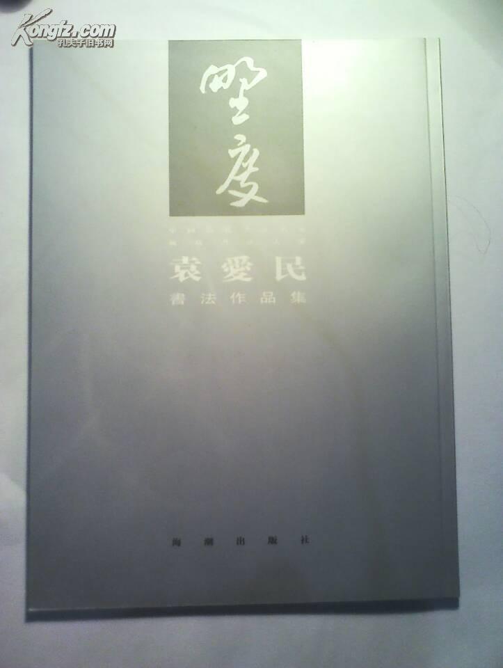 中国当代书法名家 廊坊书法大系——袁爱民书法作品集