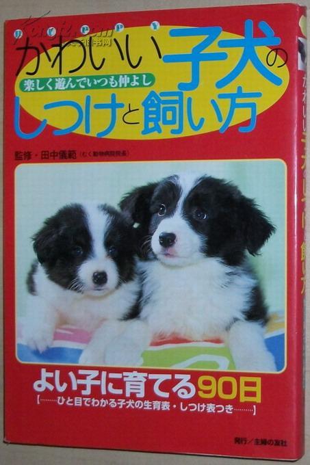 ☆日文原版书 かわいい子犬のしつけと飼い方―よく遊んで仲よく暮らす