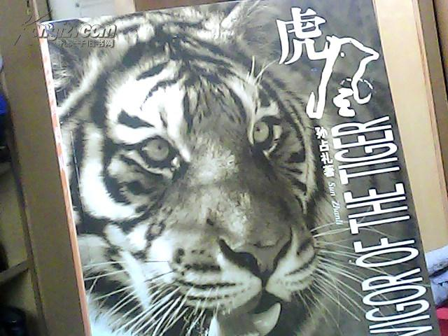 虎风(8开)全新精美老虎摄影集(大型画册 铜版纸 5000册 中英文)