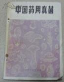 中国药用真菌