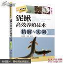 泥鳅鱼养殖技术书籍 高效养殖致富直通车:泥鳅高效养殖技术精解与实例