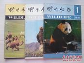 野生动物1983年第1.3.5期3本合售