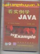 看实例学JAVA( 轻松电脑系列丛书)