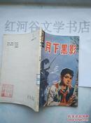 小学生文库:月下黑影---儿童小说(插图本)