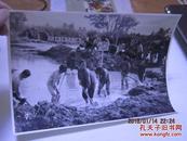 文革精品相片劳动 20X14CM