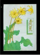 空白信纸(信笺):永恒(竖16开本).