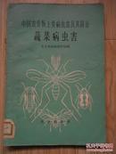 蔬菜病虫害——中国农作物主要病虫害及其防治(1964年出版)