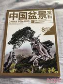 中国盆景赏石 2013-6                       A6