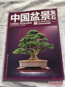 中国盆景赏石(2013-8)                   A6