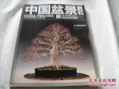 中国盆景赏石2013-9                  A6