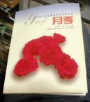 菊花  花卉生产技术原理及其应用丛书(内有54幅彩图)