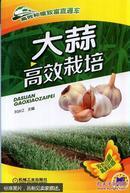 大蒜种植技术书籍 高效种植致富直通车:大蒜高效栽培