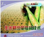 玉米精少量播种技术