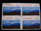 全新品佳:风光邮资片----YP11西藏A---四套合售!(每套10枚全)