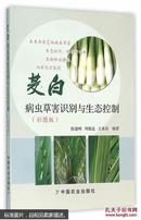 双季茭白种植技术书籍 茭白病虫害防治图书 茭白病虫草害识别与生态控制 陈建明周锦连王来亮著