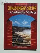 全景中国 中国能源 可持续战略  英文版   2007年初版