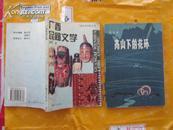广西民间文学+广西少数民族(2册.