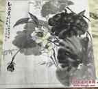 手绘真迹国画:梅州青年画家 天鸿(和为贵)荷花