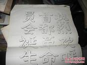 北京大学热烈庆祝北京革命委员会成立文革油印布告 仅见 长35厘米宽27厘米