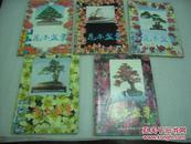 花木盆景(1998年第1,2,3,4,6期)5册【058】