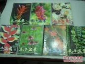 花木盆景2001年第1,3,4,5,7,8,9期共7册【058】