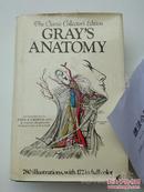美国原版 英文 格氏解剖学 Grays Anatomy 医学专业 图册