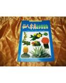 仙人掌类及多浆植物.