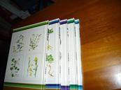 日本原版书:【図解観察シリズ身近な植物:6-10册,共5册】(16开精装 )