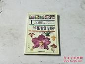 兰花鉴赏与养护
