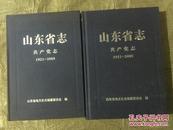 山东省志共产党志1921——2005 (上下册)