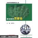 食用菌鸡腿菇种植技术书籍 新法栽培鸡腿菇