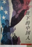 星条旗下的中国人