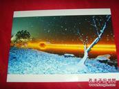 湘湖--雪夜【魅力湘湖·摄影大赛作品原照】附·作者(肖丰)签名
