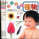 宝宝看世界水果食物(0-3岁 全六册) 儿童书籍 适合0-3岁儿童 全彩高清晰图片