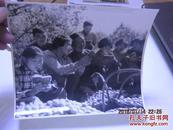 文革精品照片学习16X14CM