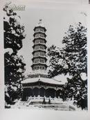 新华社照片,1985年:北京香山琉璃塔,15.5*20.5