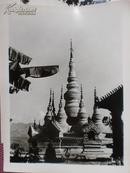 新华社照片,1985年:飞龙白塔,云南景洪县,是座傣族特点的古建筑,15.5*20.5