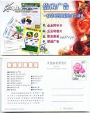 哈尔滨邮政局1999年发行 广告宣传邮资明信片