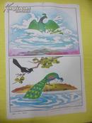 小学语文教学挂图 看图学文  《骄傲的孔雀》