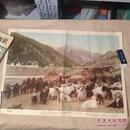 老版教学挂图 天山牧场 4开1957年印数46000