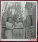 【民国老照片】民国旗袍美女。篱笆~~