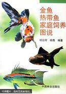 家庭金鱼养殖方法技术教学书籍 金鱼热带鱼家庭饲养图说