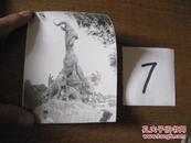 照片:广州五羊雕塑照片一张