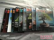 (花木盆景--盆景赏石  2013年全册 一共10本,缺2,3月。都有1月B版,4月,5月,6月,7月,8月,9月,10月,11月,12月。)共10本。合售。  A6