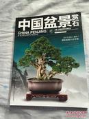 (中国盆景赏石 2013-7  )                          A6