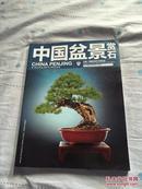 《中国盆景赏石2013-唐苑的世界盆景对话特别专辑》        A6