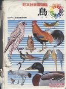 买满就送 旺文社学习图鉴 鸟
