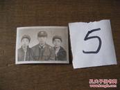 照片:五六十年代三兄弟合影照片