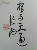 """8开 《张海书法集》   扉页有张海书法""""势与天通""""签名铃印!"""
