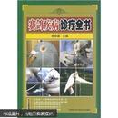 信鸽饲养与训练图书 赛鸽养殖技术书籍 赛鸽疾病诊疗全书